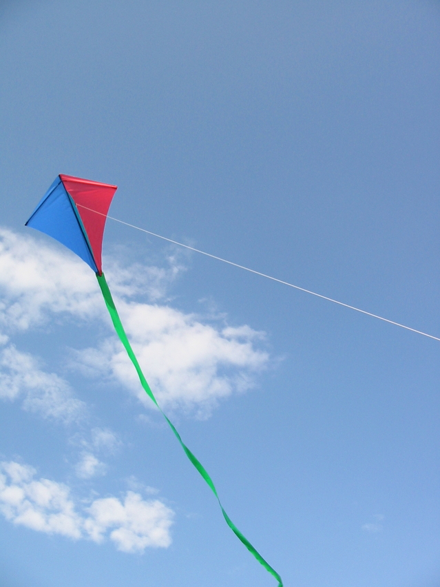 single-line-kite-skylark-1-1473946-639x852