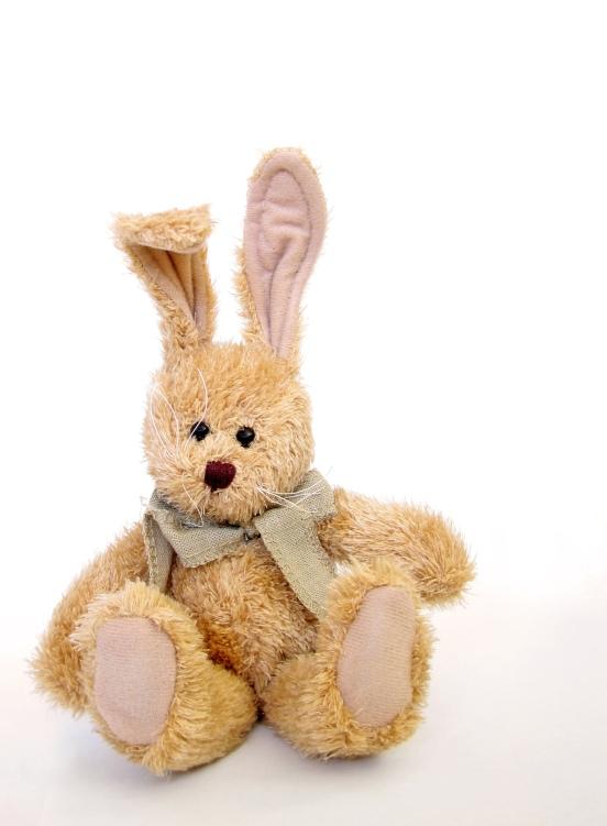 furry-bunny-1424804-1279x1742